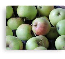 Magic Wishing Apple Canvas Print