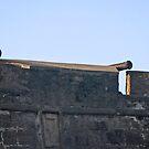 Castillo de San Marcos 05 by joeschmoe96
