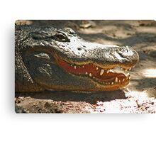 Gator 006 Canvas Print
