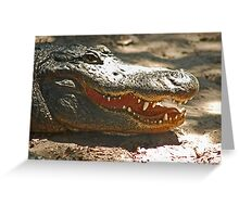 Gator 006 Greeting Card