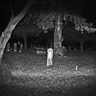 Huguenot Cemetery 01 by joeschmoe96