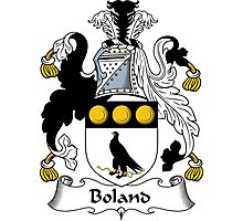 Boland Coat of Arms / Boland Family Crest Photographic Print