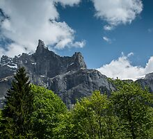 The Peaks of Fer a Cheval Nature Reserve by Judi Lion