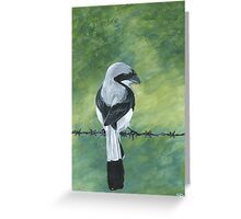 Shrike on a Wire Greeting Card