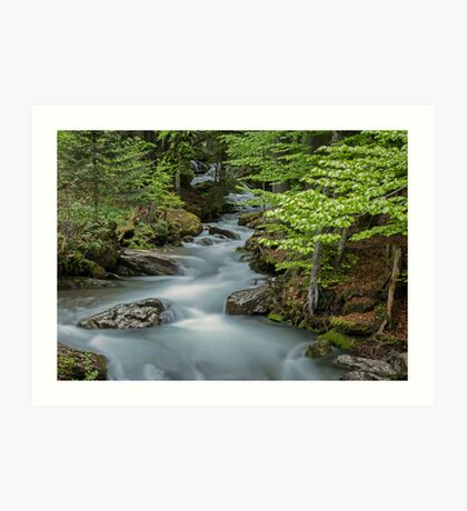 Falls on the River Ardent Art Print