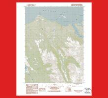 USGS TOPO Map Alaska AK Seldovia B-5 NE 353776 1987 25000 One Piece - Short Sleeve