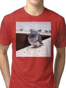 Alone and Fowl Tri-blend T-Shirt