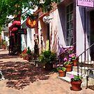 Street With Art Gallery and Tobacconist Alexandria VA by Susan Savad