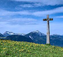 A stone cross in an Alpine Meadow by Judi Lion