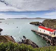 RNLI Lifeboat Station, St Justinians, Pembrokeshire by Heidi Stewart