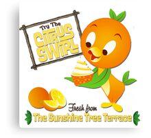 Florida Orange Bird - Disney World Canvas Print