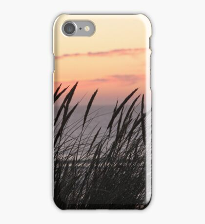 Dune Grass At Sunset iPhone Case/Skin