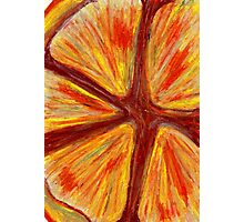 Orange segment Photographic Print