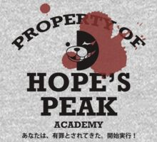 Property of Hope's Peak Academy by DJSev