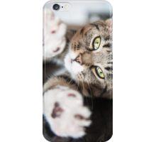Shirow the Cat - stretch iPhone Case/Skin
