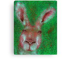 Kangaroo Canvas Print