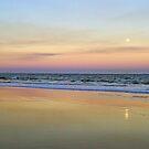 Torquay Moon by Harry Oldmeadow