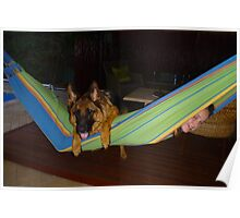 On the Hammock Poster