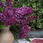 Lilacs 2 by Halobrianna
