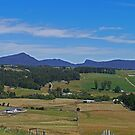 Farm near Ulverstone, Tasmania, Australia by Margaret  Hyde