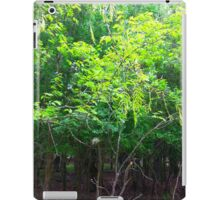 Beautiful leaves 2~ iPad Case/Skin