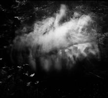 The ghosts of forest - Die Geister des Waldes by Ronny Falkenstein