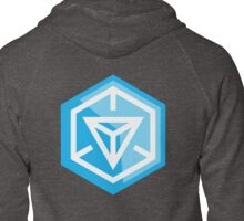 Ingress Zipped Hoodie