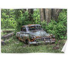 Woodland Cruiser Poster