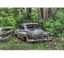 Woodland Cruiser Photographic Print