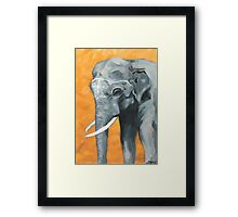 Painted elephant - orange poppy background.  Framed Print