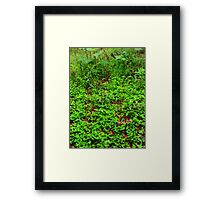 Green world~ Framed Print
