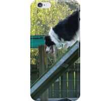 Ollie in training........up and over........! iPhone Case/Skin