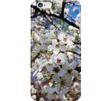 Springtime Past iPhone Case/Skin