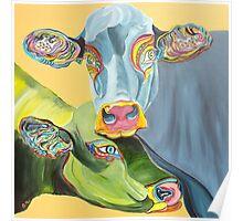 Pet Cows Poster