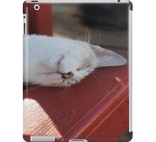 Sleeping Royal  iPad Case/Skin