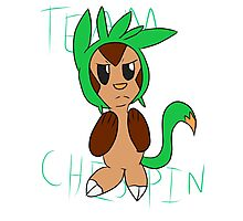 Team Chespin Photographic Print