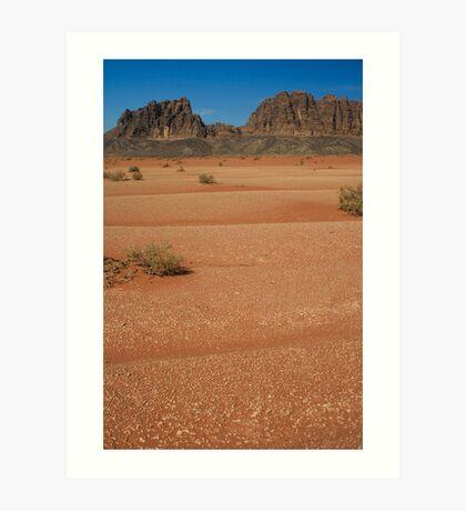 In the deserts of Jordan Art Print