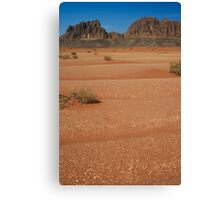 In the deserts of Jordan Canvas Print