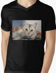Pretty Kitty (Clothing Products) Mens V-Neck T-Shirt