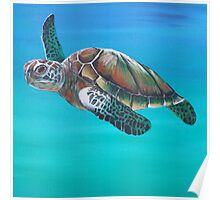Sea Turtle Down Under Poster