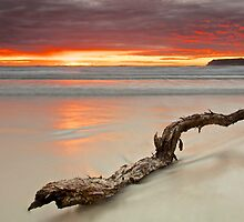 Table Cape Sunrise from Boat Harbour Beach by Paul Campbell  Photography