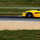 The Yellow Viper  by ArtbyDigman