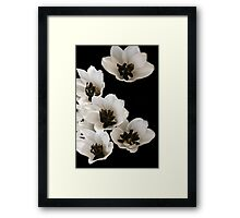 Floating in Space Framed Print