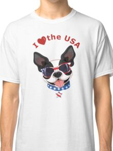 Love the USA Classic T-Shirt