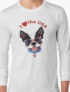 Love the USA Long Sleeve T-Shirt