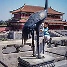Forbidden City 1 by Werner Padarin