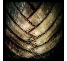Texture végétation Photographic Print