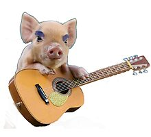 Piglet Playing Acoustic Guitar Photographic Print