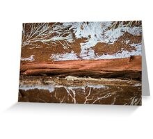 The wood draws trees - Reflecting the Nature it was Greeting Card
