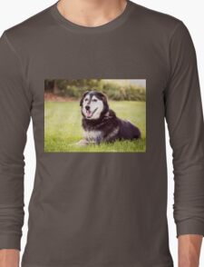 Jasper (Clothing Products) Long Sleeve T-Shirt